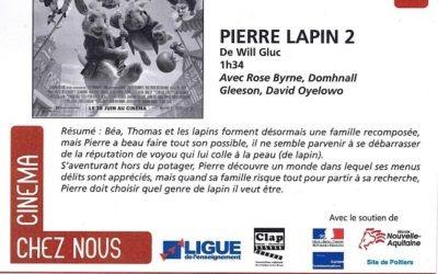Mercredi 4 Août – Cinéma – Pierre Lapin 2